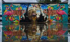 DSC_4476 (Vinicius Pertile) Tags: grafitti art africa zé palito colors animals life brazil brasil limeira
