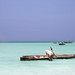The Dhows of Zanzibar