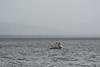 cores de Antonina.jpg (Ricardoneuro) Tags: pescadores antonina baía de paranaguá fim tarde