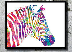 Zebra Watercolor Art Print Zebra painting Home decor Animal Watercolor Zebra poster wall art Nursery Decor Animal Illustration Children room (bogiartprint) Tags: artandcollectibles prints giclee watercolor animalwatercolor zebra zebrawatercolor zebraposter zebraillustration zebrapainting watercolordecor animalnursery childrenroomdecor nurseryart animalillustration zebraart