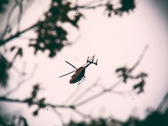 Life Flight Helicopter (Jon-Fū, the写真machine) Tags: nikcollection touchedup jonfu 2017 olympus omd em5markii em5ii em5mkii em5mk2 em5mark2 オリンパス mirrorless mirrorlesscamera microfourthirds micro43 m43 mft μft マイクロフォーサーズ ミラーレスカメラ ミラーレス一眼カメラ ミラーレス機 ミラーレス一眼 houston ヒューストン texas tx テキサス 得克萨斯 lone star state texan america usa united states 米国 美国 美國 north flight flying helicopter helicopters ヘリコプター ヘリ vehicle vehicles texasmedicalcenter medicalcenter