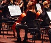 I can read your music (sander_sloots) Tags: doelen rotterdam cello celliste symfonieorkest rijnmond music orchestra woman lady dame vrouw black chair stoel strijkstok bow poulenc grieg