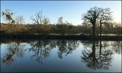 Reflet d'hiver (Jean Paul Renais) Tags: france bretagne illeetvilaine fleuve rivière reflet