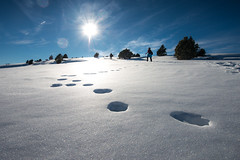 Step by step (Carles Alonso photo) Tags: freedom fun landscape alpine nature exploring mountains outdoor team explore light snow adventure spain mountaneering travel forest hiking nikon public alpinist action d800 effort ice