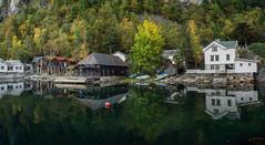 Mirror image (Kari Siren) Tags: reflection shore house sea fjord norway geiranger