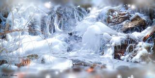 Une période de grand froid