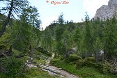 DSC_7246 (Original Loisi) Tags: panorama mountain mountains nature berg view wildlife natur berge slovenia slovenija slowenien wandern kranjskagora bergwelt republikaslovenija kronau