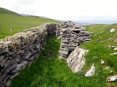 Entrance to Hoga (nz_willowherb) Tags: see scotland tour visit shetland sandwick to go mousasound brochofburraland wardofburraland
