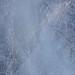 T2715_HAVICE - Garden DIRT-Blue 22 - 72ppi 1280