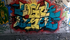 LOGIK RISER fnc (beengraffin) Tags: art up one graffiti san colorful paint tag diego tunnel pit spray sd crew vandal illegal vandalism writer write graff piece pitt 619 tunnels throw tagger krew 760 oner throwie daygo throwy 858