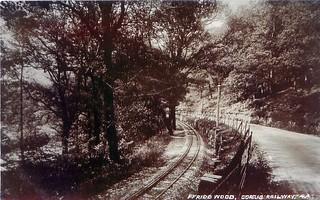 Corris Railway - Ffridd Wood