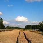 """Road to heaven? #Steenhuize #herzele #vlaamseardennen #belgie <a style=""""margin-left:10px; font-size:0.8em;"""" href=""""http://www.flickr.com/photos/117161355@N07/19964013119/"""" target=""""_blank"""">@flickr</a>"""
