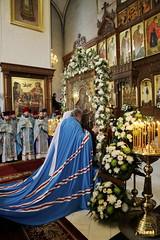 100. The Commemoration of the Svyatogorsk icon of the Mother of God / Празднование Святогорской иконы Божией Матери