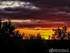 Atardecer en la Laguna de la Nava (Esmerejon) Tags: atardeceres amaneceres lucesespeciales nubes ocasos puestasdesol anocheceres ortos