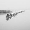 (Mat-S) Tags: roselière stacks piquets annecy lac lake blackandwhite noiretblanc minimalism reeds longexposure longueexposition nd1000