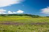IMG_5207-1 (Andre56154) Tags: spanien espana spain andalusien andalusia blume flower wiese weide meadow himmel sky wolke cloud