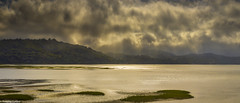 Sunset on Tomales Bay (allentimothy1947) Tags: tomales bay sunset water marincounty ocean clouds golden hour california