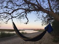 My livingroom ;) (Analand1) Tags: hammock kingsparkbluffs kingspark