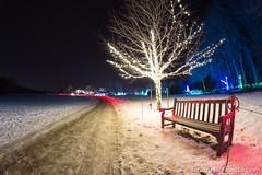 7-web-watermark (Brian M Hale) Tags: tower hill botanic botanical garden winter reimagined outdoors snow night outside christmas holiday lights boylston ma mass massachusetts brian hale brianhalephoto