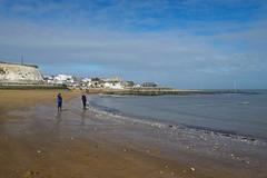 """Dog swimming"" Viking Bay Broadstairs (favmark1) Tags: broadstairs kent beach dog viking bay vikingbay swimming"