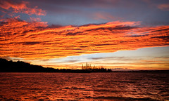 Fire on the water (lizcaldwell72) Tags: water reflection sky hawkesbay newzealand sunset napier light