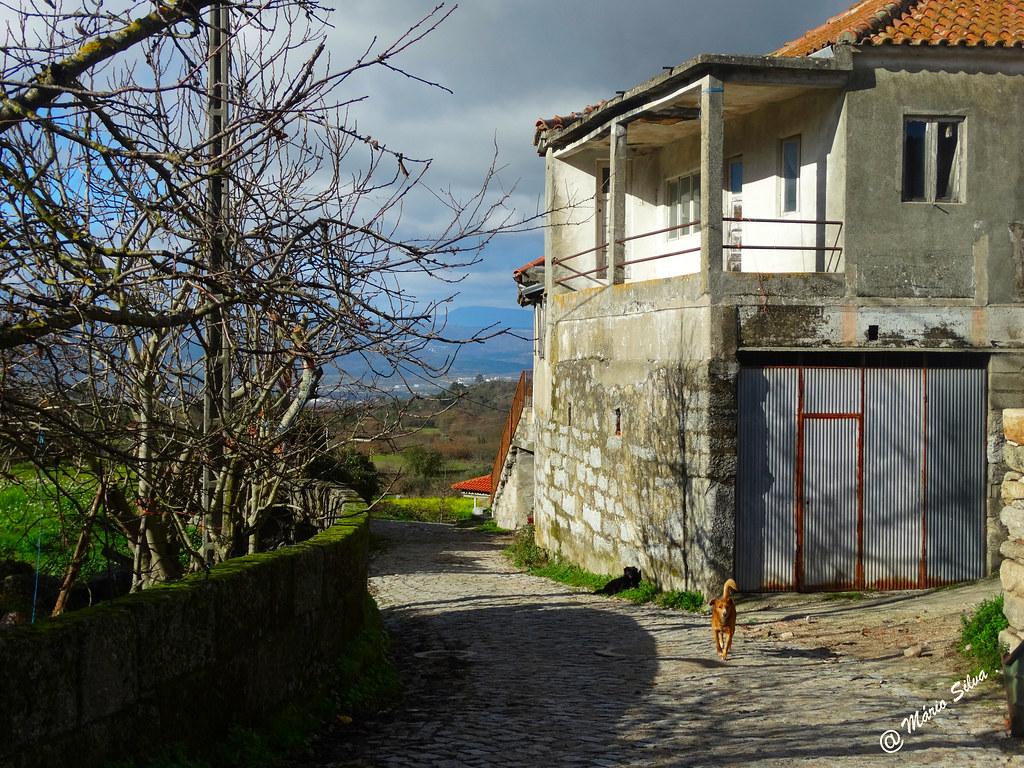Águas Frias (Chaves) - ... casa da Aldeia ...