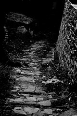 7453 (dimouatha) Tags: πηλιο pilio picoftheday photooftheday greece lovegreece volos magnisia