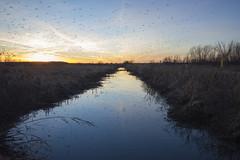 Sunset at Baker Wetlands (pdecell) Tags: bakerwetlands kansas lawrence dusk