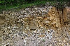 Baraboo Quartzite (upper Paleoproterozoic, ~1.7 Ga; Rt. 12 roadcut, South Range, Baraboo Ranges, Wisconsin, USA) 2 (James St. John) Tags: wisconsin range quartzite baraboo precambrian bluffview paleoproterozoic proterozoic