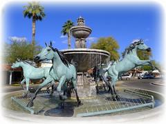 Horse Fountain 17 (milomingo) Tags: arizona urban sculpture horse art public water fountain animal bronze outdoors landmark civic scottsdale arabianhorse touristattraction municipal equine attraction horsefountain bobparks 5thavenueshops bobparkshorsefountain