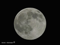 Totally full moon (StRo92) Tags: nature night nice nikon islam natureza ngc amman now ramadan nikontop