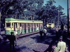 Sydney Tram (oz_lightning) Tags: people heritage history film nature transport sydney tracks tram australia slide nsw newsouthwales halfframe aus olympuspen railways filmscan loftus 16bit agfact18 canonpixmamg8150