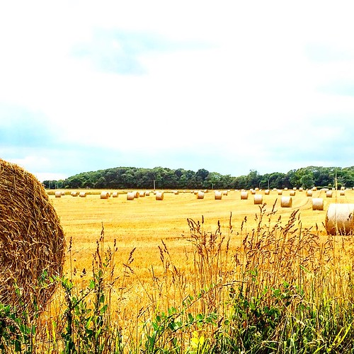 Nothing says summertime hay! #upsticksandgo #hay #summerintheUK #exploring #naturephoto #michfrost #unitedkingdom #michfrost #instagood #travellingtheworld #summer #countrylife