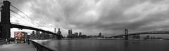 Kolonihavehus NYC (Nobbinumnut) Tags: nyc bridge newyork colour weather mono greenhouse popped brooklynusa kolonihavehu