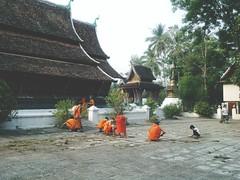 Wat Xieng Thong (shazell212) Tags: orange rooftop asia southeastasia cleaning palmtrees monks temples laos lao luangprabang wats watxiengthong luangphrabang boymonks orangerobes templebells templecleaning