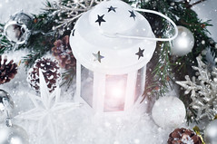 Christmas white lantern (lyule4ik) Tags: lantern holiday christmas year winter tree white lamp new light candlelight advent background snow decoration seasonal celebrate celebration xmas glow traditional decorative merry wooden vintage candle warmth warm glowing boards spiritual burn one faith creative flame hope mood lightning bauble religion romantic