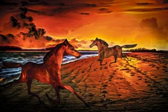 Wild Horses on the Wild Beach (Rusty Russ) Tags: horse beach wild color light cloud run photoshop flickr google bing daum yahoo image stumbleupon facebook getty national geographic magazine creative creativity montage composite manipulation hue saturation flickrhivemind pinterest reddit flickriver pixelpeeper blog openuniversity flic twitter alpilo commons wiki wikimedia worldskills oceannetworks ilri comflight newsroom fiveprime photoscape winners all people young photographers paysage artistic photo pin stockpainterly paint brush painttexture tumblr style outside digital picture newburyport north shore cape ann