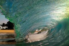 In betweens (MICHAEL A SANTOS) Tags: aloha beach c6000 clarity clouds eastshore eastside hawaii hawaiibeaches hawaiianbeaches liquideyewaterhousing liquideyewaterhousingc1795 liquideyewaterhousingc6000 michaelasantos oahu ocean paradise reef saintsphotography sand sel28f2 sky sony sony28mmf2 sonya6000 sonyalpha sunrise surfphotography waves whitewash
