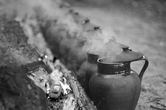 My lunch (Capturedbyhunter) Tags: fernando caçador marques fajarda coruche herdade dos concelhos ribatejo santarém portugal pentax k1 vivitar series 1 24 25 105 105mm black white preto e branco monocrome monochrome monocromático manual focus focagem foco outdoor inverno winter