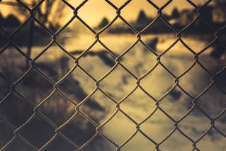 frosty fence - 365/366