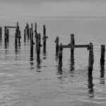 The Old Pier, Swanage thumbnail