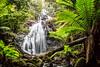 Silver Falls (Richard Landherr) Tags: silver falls castra tasmania silverfalls waterfall