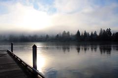 Angle Lake (kiras_pnw_world) Tags: pnw washington ice trees fog cold frozenlake lake