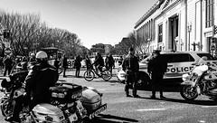 2017.02.04 No Muslim Ban 2, Washington, DC USA 00462