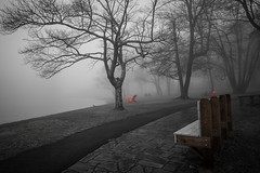 Red focus... (jaegemt1) Tags: fog foggy blueridgeparkway blackandwhite blackandwhitephotography selective color trees tranquil travel bench landscape lake jaegemt1 pensive