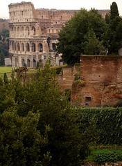 Rome 2010 1613