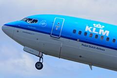 KLM Boeing 737-800, AMS (Boris Samoylenko) Tags: netherlands amsterdam plane airplane nikon exterior aircraft aviation off take boeing klm takeoff schiphol ams spotting 737 avia eham b737 авиация b738 polderbaan авиа d5200 phbxy