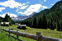 San Nicol Valley (Dolomites). (GIVI58) Tags: italy italia valley trentino dolomites dolomiti pozza dolomiten valdifassa sannicolo valsannicolo