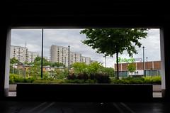 _DSC5524 (nelsing) Tags: houses shadow tree buildings parkinglot shadows natural garage framing bushes torg frlunda naturalframing skugga skuggor frlundatorg