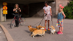 A happy family (Poupetta) Tags: dogs bicycle helsinki strangers